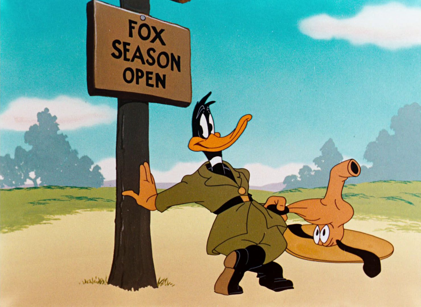 Pin by lemon lou on characters Daffy duck, Looney tunes