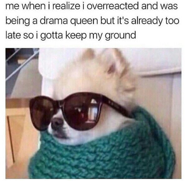Drama Queen Over Reaction Meme Funny Dog Memes Funny Relatable