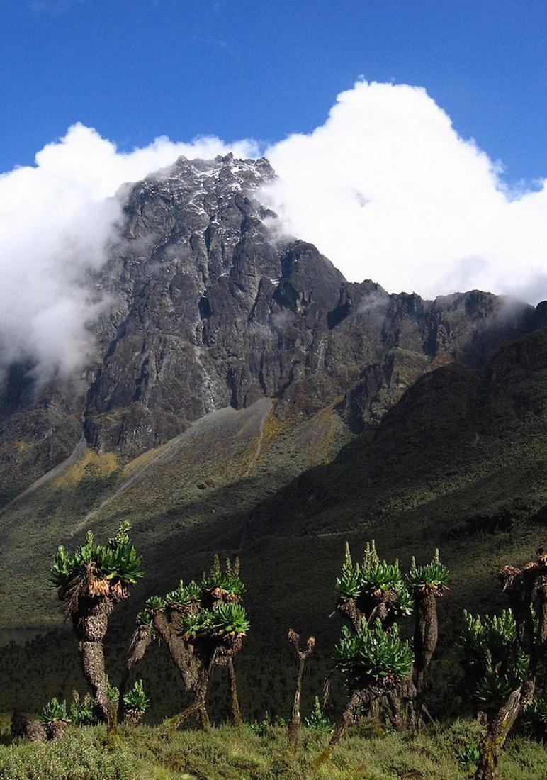 Ruwenzori Mountains Also Called Mountains Of The Moon Uganda Natur