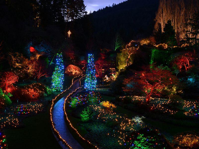 ca24b334b89581e4104ce588179d8701 - The Butchart Gardens Christmas Lights Tour