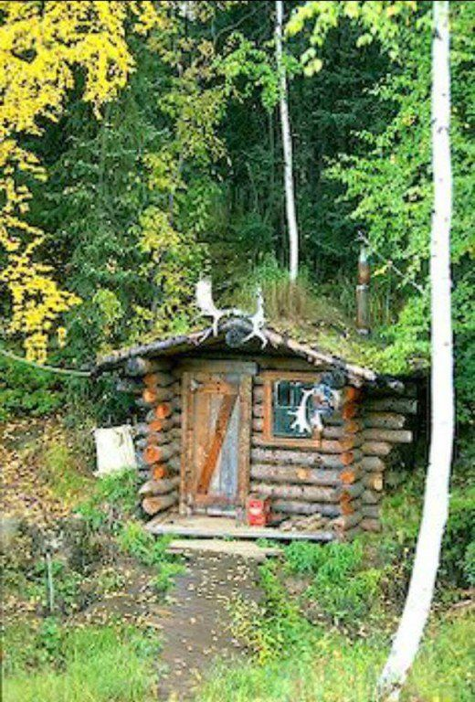 Homeless A Good Thing Off Grid Living Cabin Cabins