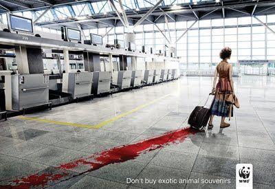 Diz não à exploração dos animais exóticos.  campanha WWF