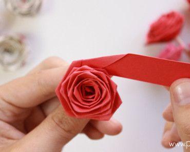 Como Hacer Rosas Con Tira De Papel Paper Quilling Rose Flor - Cmo-hacer-rosas-de-papel