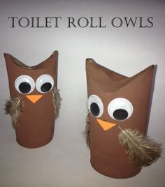 TP Roll Owls & Loo Roll Crafts!