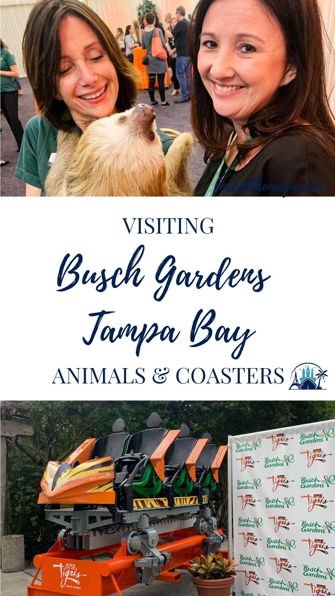 ca26b35fbf63531eafc9c8527a149ccf - Busch Gardens Tampa Bay All Day Dining Deal