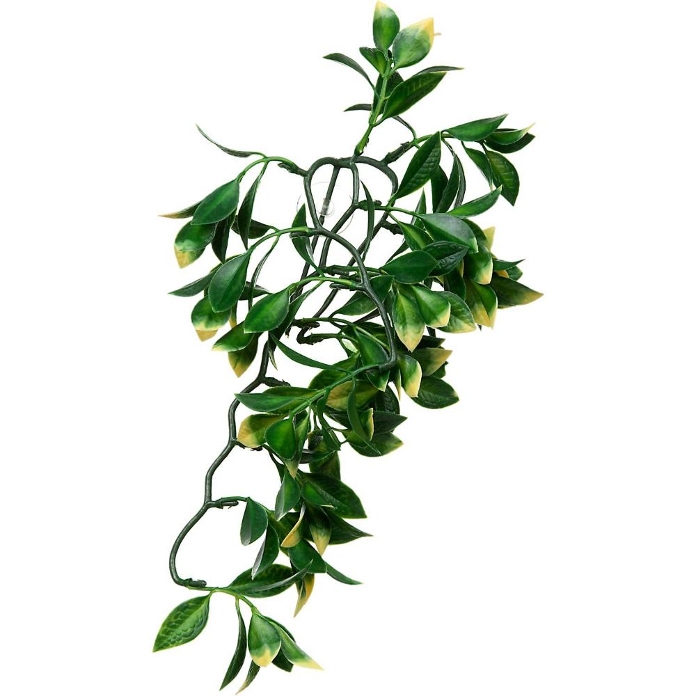 Exo Terra Mandarin Jungle Plant 12 Length Petco Plants