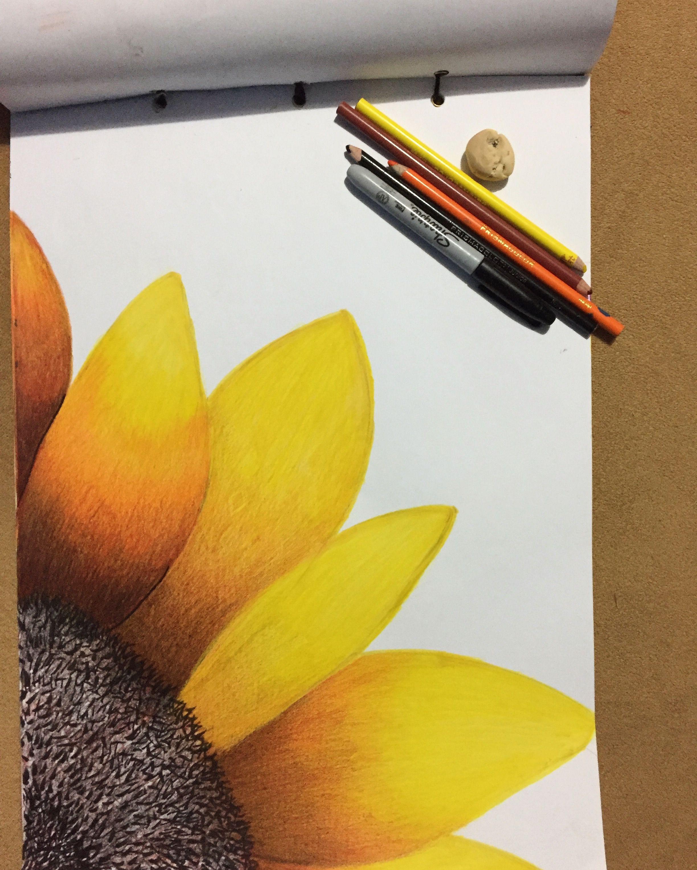 Girasol Dibujo Girasoles Dibujo Dibujos De Arte Simples Arte De Lienzo Pequeno