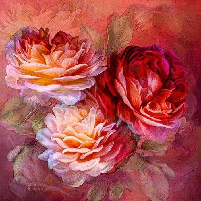 Three Roses Red