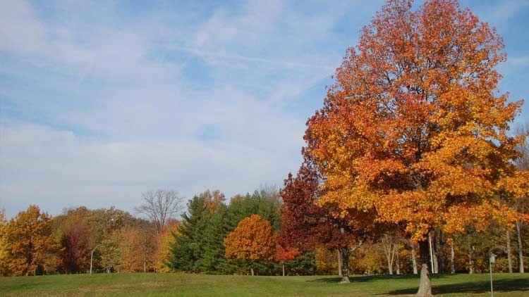 Southeastway Park Visit Indy Places to go, Park, Trip