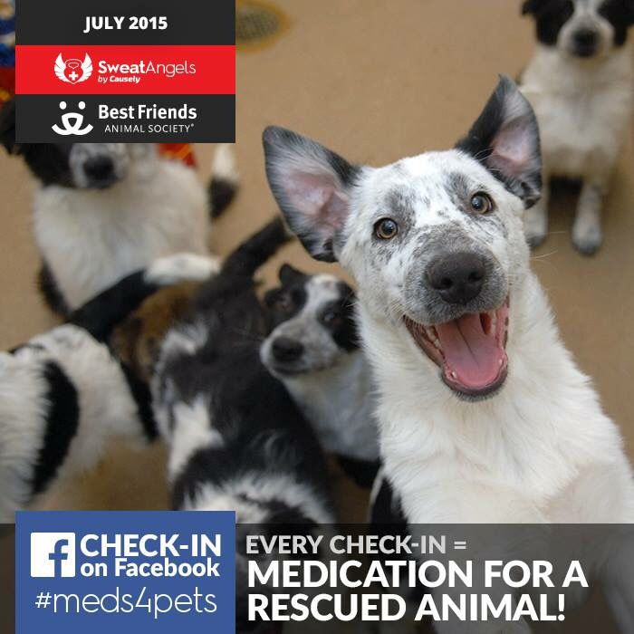 July's check ins support Best Friends Animal Society! They will help provide medication to injured of sick animals! Does your gym get involved in philanthropy every day? Check us out! Kandufitness.com