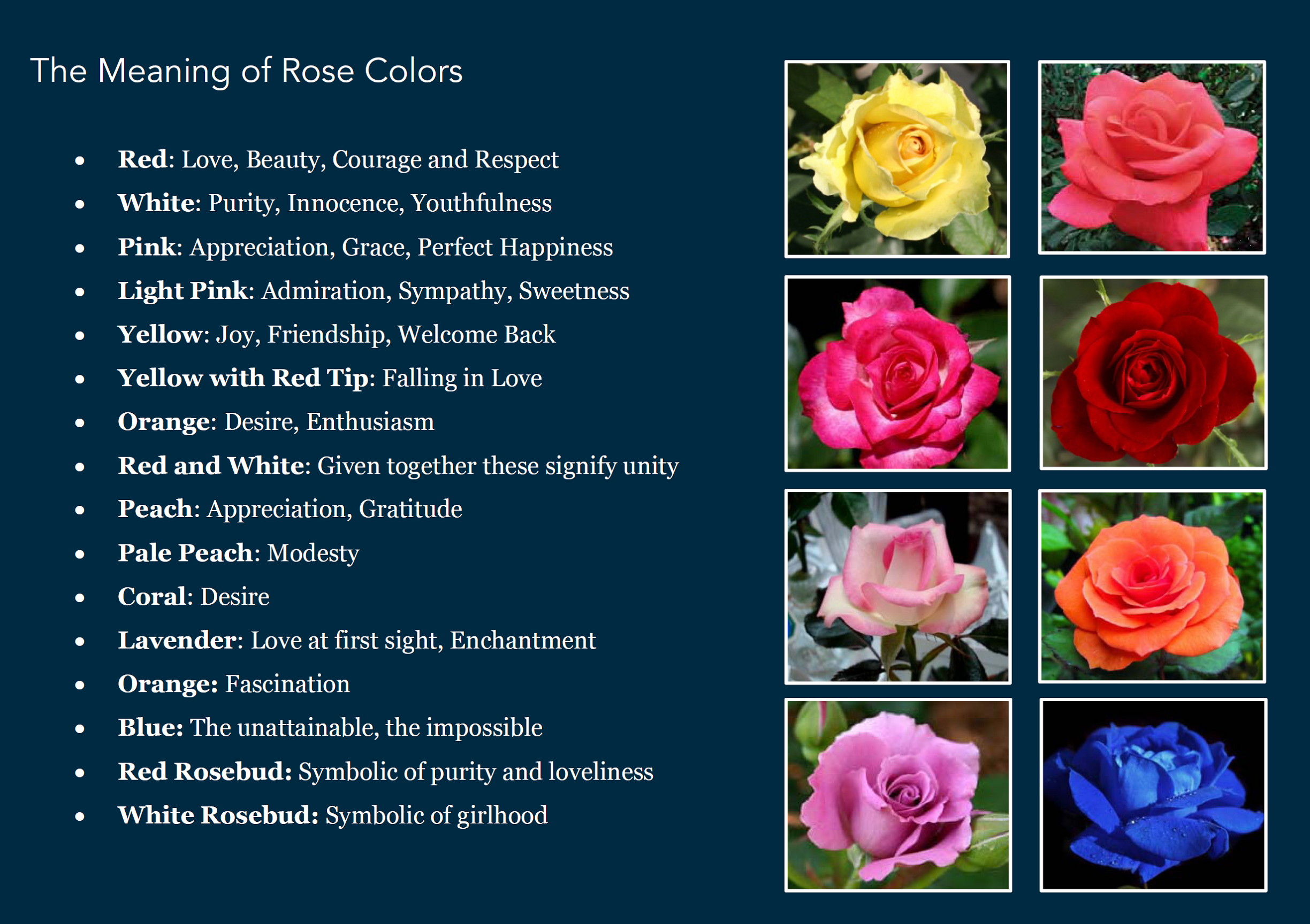 Rose Color Meanings Buffalo Wedding Florist Buffalo Wedding