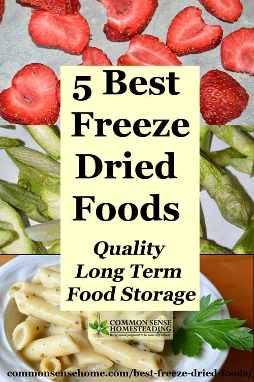 Best Foods For Long Term Storage Interesting 5 Best Freeze Dried Foods  Quality Long Term Food Storage  Freeze
