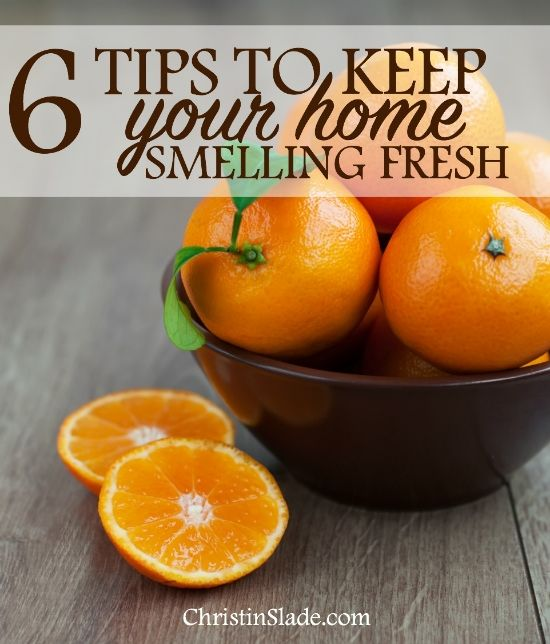 6 Tips To Keep Your Home Smelling Fresh Smell Fresh House Smell