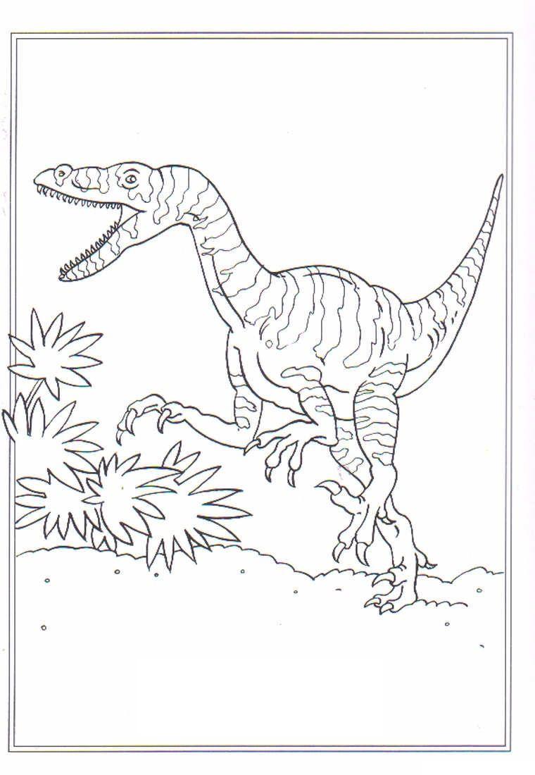 Ausmalbilder Velociraptor Ausmalen Malvorlage