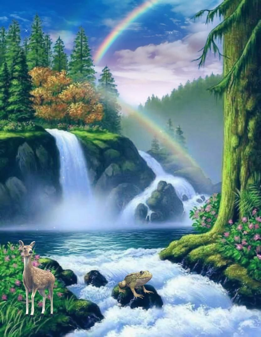 For You O Lord Will Bless The Righteous With Favor You Will Surround Him As With A Shield Video Beautiful Nature Pictures Waterfall Pictures Pictures