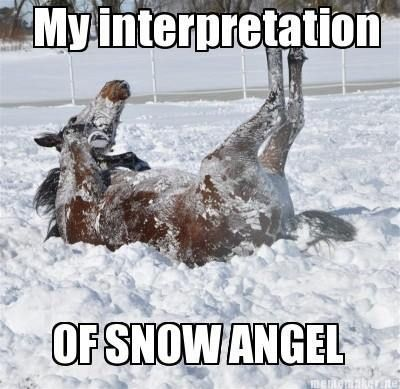 horse shaming humor | Uploaded to Pinterest