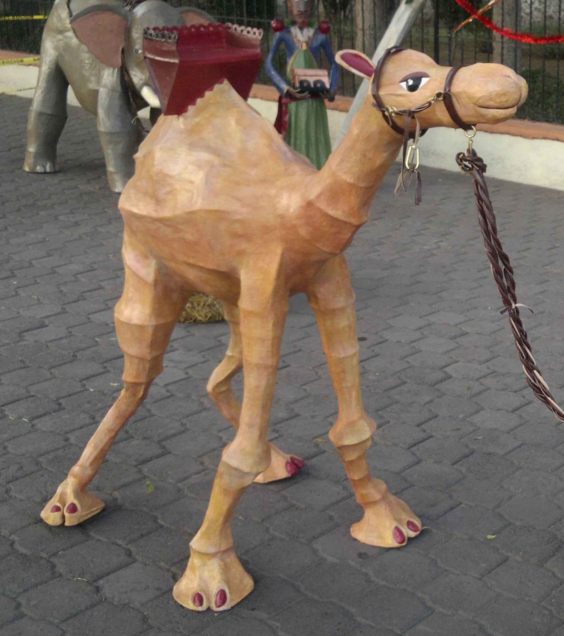 camello . nacimiento - cartoneria mexicana - juanjo infante