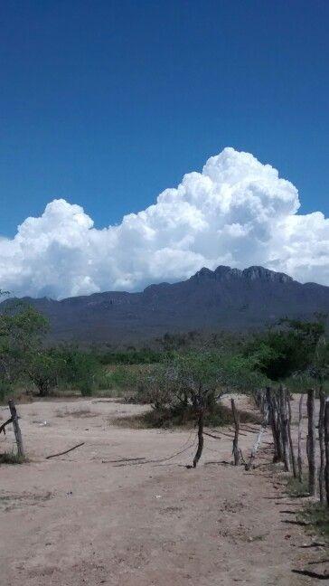 Cerro del Zacanta.