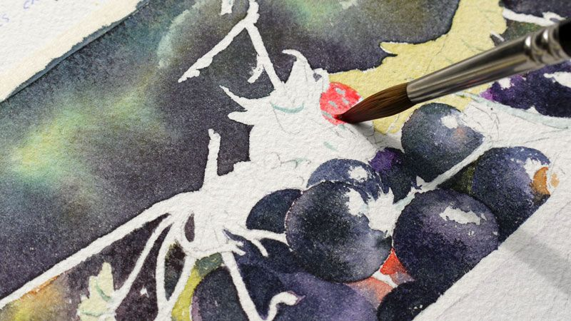 Cassis Groseilles En Rouge Et Noir Peinture Dessin