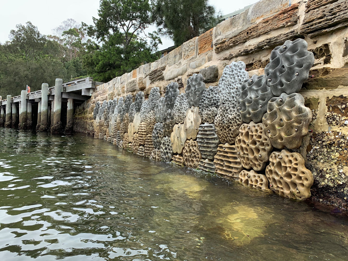 Green Seawalls In Sydney Harbour Concrete Seawall Modules By Svc Urban Sea Wall Eco City Concrete