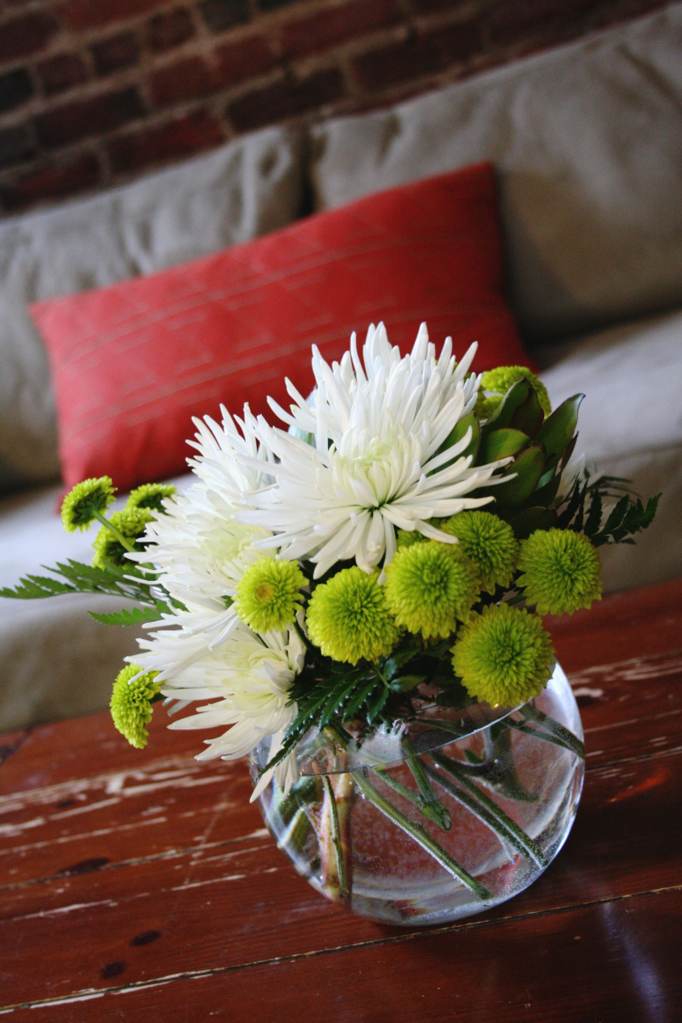 Green button mums and white spider flowering