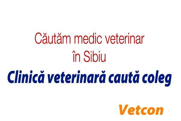Cautare veterinara Celibataire.)