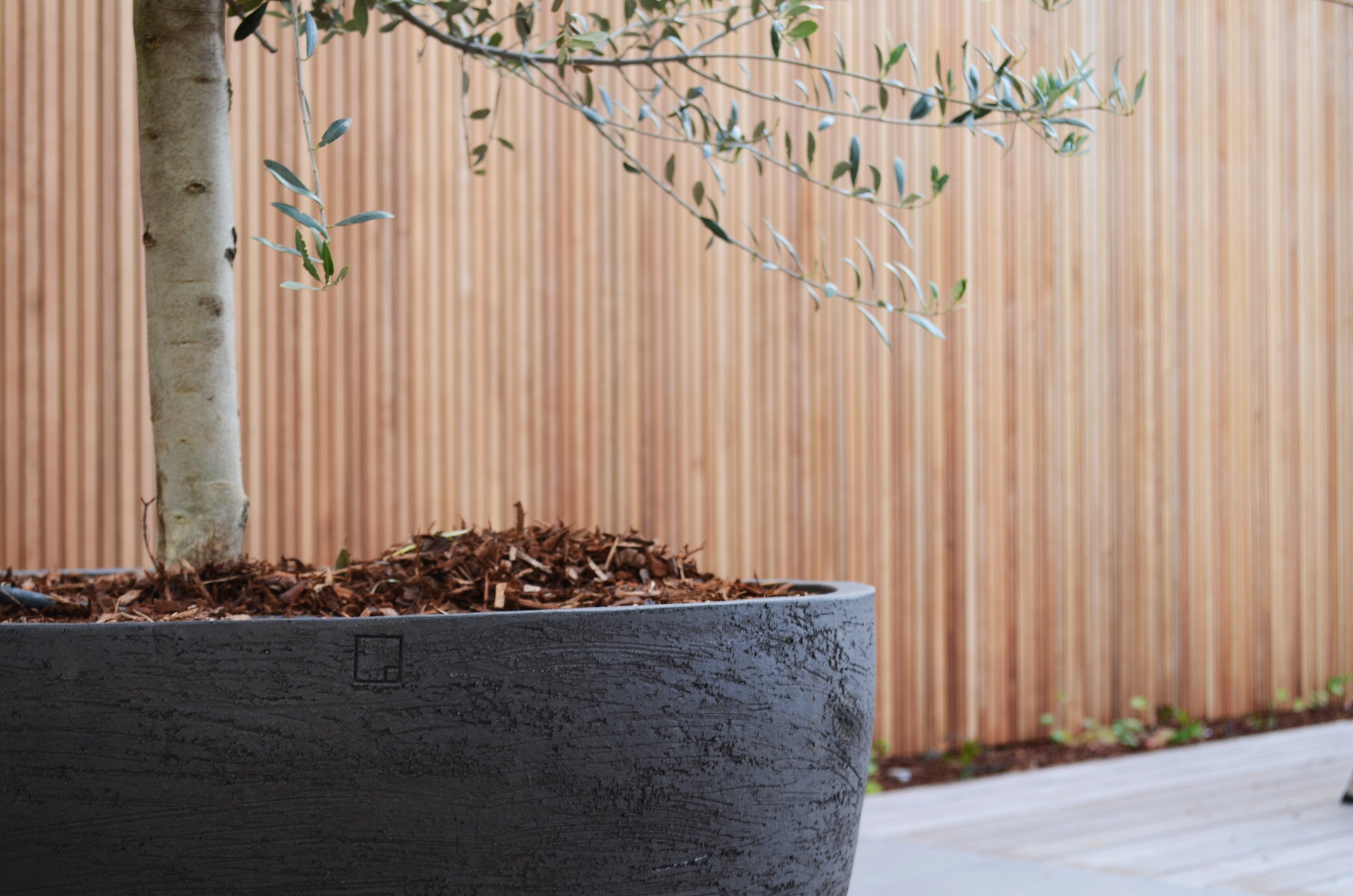 Tree Planters Google Search Outdoor Ideas Pinterest
