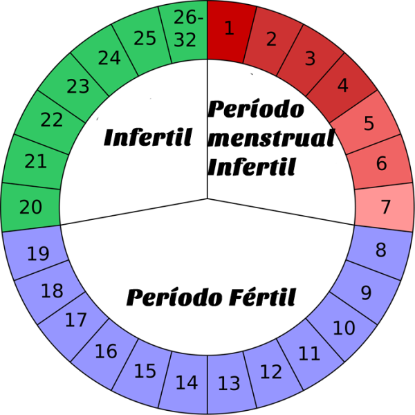 Periodo de fertilidade feminina
