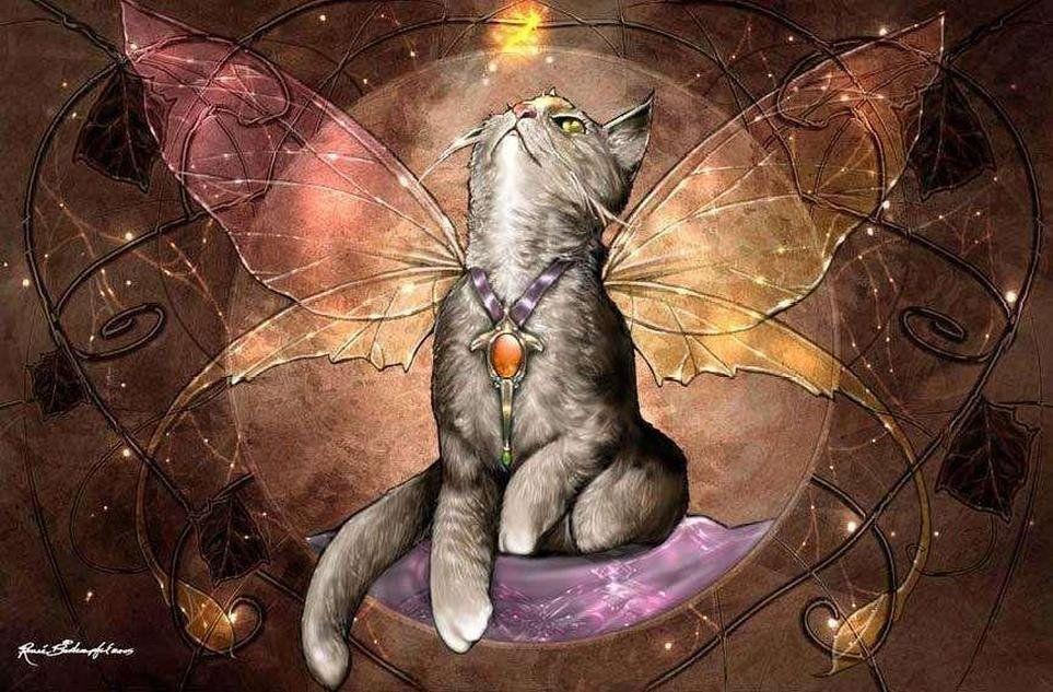 человеку стали нравиться коты мистика ли это нас сопровождал, время