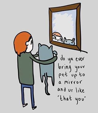 Holding your cat up to the mirror so they can see how pretty they are.   21 Slightly Odd Things All Cat Owners Are Guilty Of