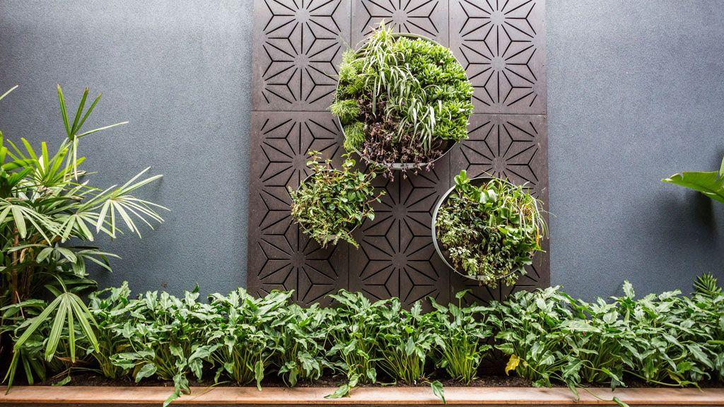 Vertical Garden For Outside Ensuite Windows?
