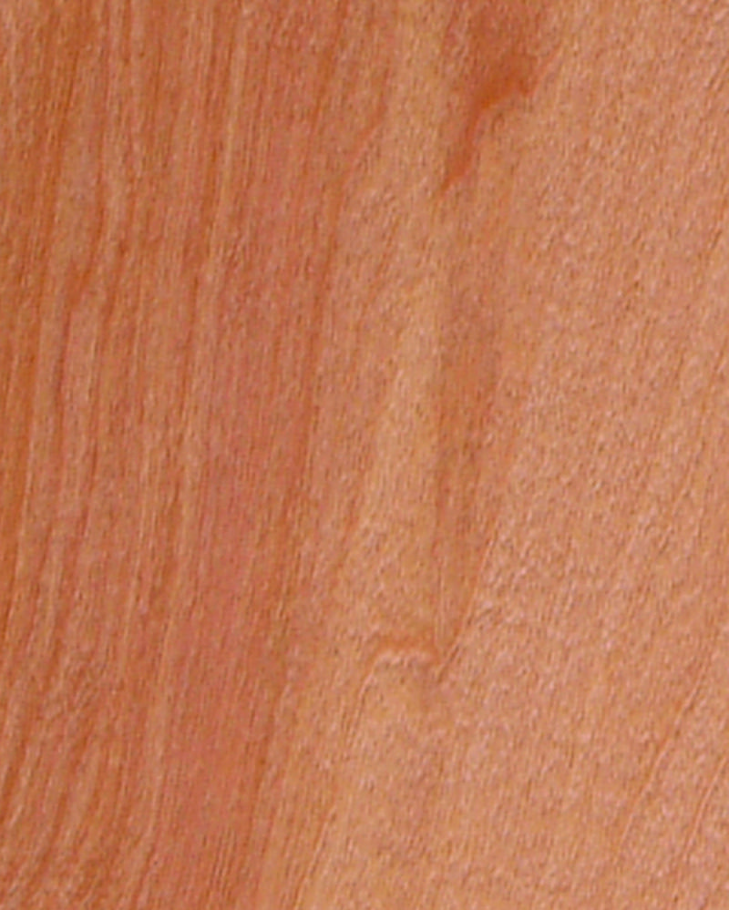 """""""Golden"""" stain applied to birch. Stain colors, Wood"""