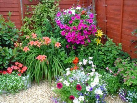 Jardines Pequenos Con Flores Jardines Pinterest Small Gardens