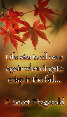 Fall Quotes About Love Fair Fall Quotes 2016Happy Fall Quoteshappy Fall Yall Quotesi Love
