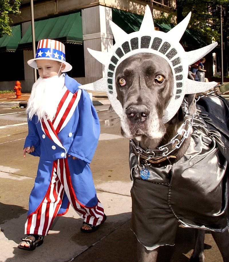 14 Of The Most Patriotic Pets In America Patriotic Pets