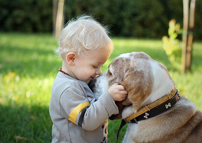 xx-niños-con-dogs2__700