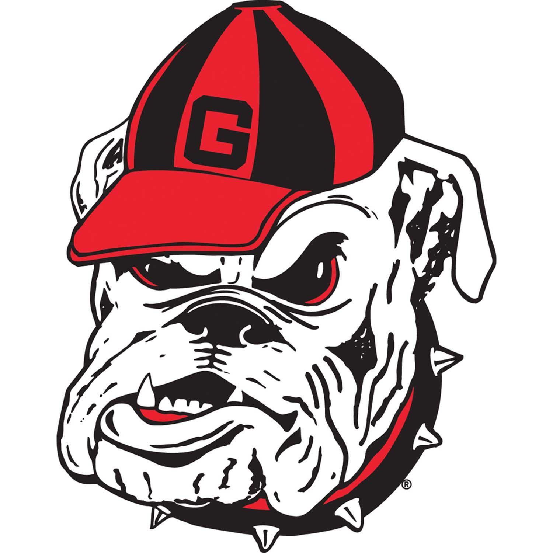 The Georgia Bulldogs Begin their 2010 spring practices this
