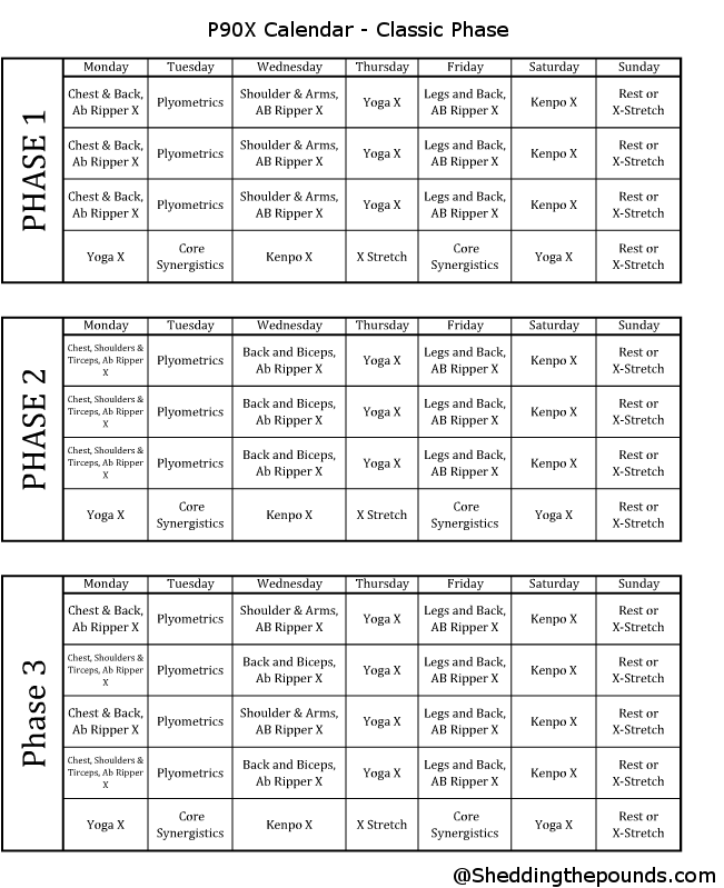 picture regarding Printable P90x Workout Schedule identified as Pin upon Health and fitness Nutritious Having
