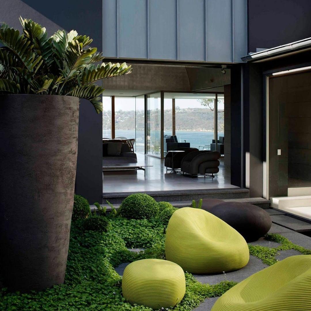 Garden Life Gardenlifesydney Instagram Photos And Videos Life Design Design Design Projects