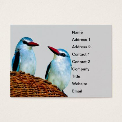 Kingfisher Birds South Africa Business Card Zazzle Com Kingfisher Bird Photo Business Cards Diy Business Cards