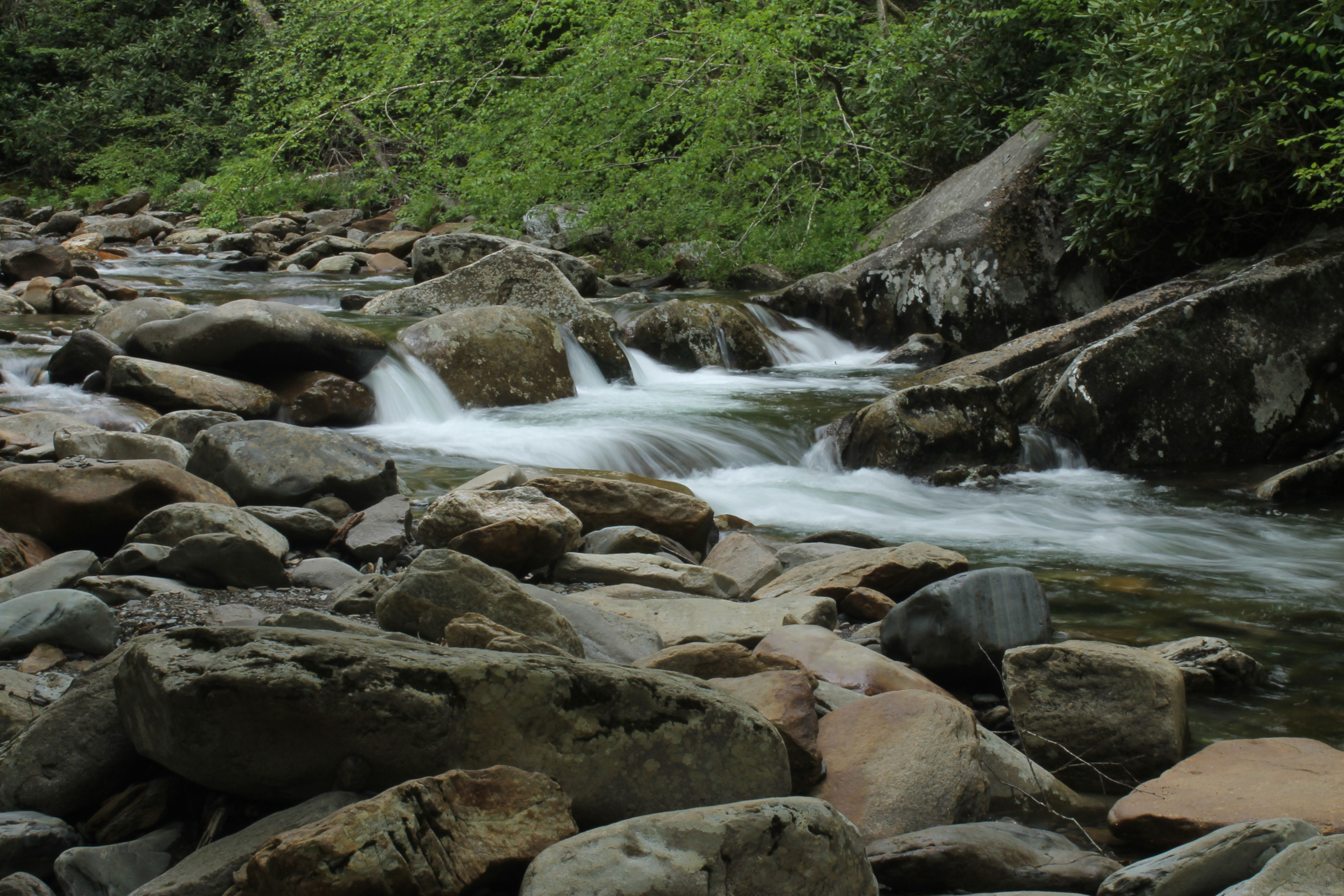 A little stop over the mountain from Gatlinburg to Cherokee - In the Great Smokey Mountain National Park - 18 May 2014