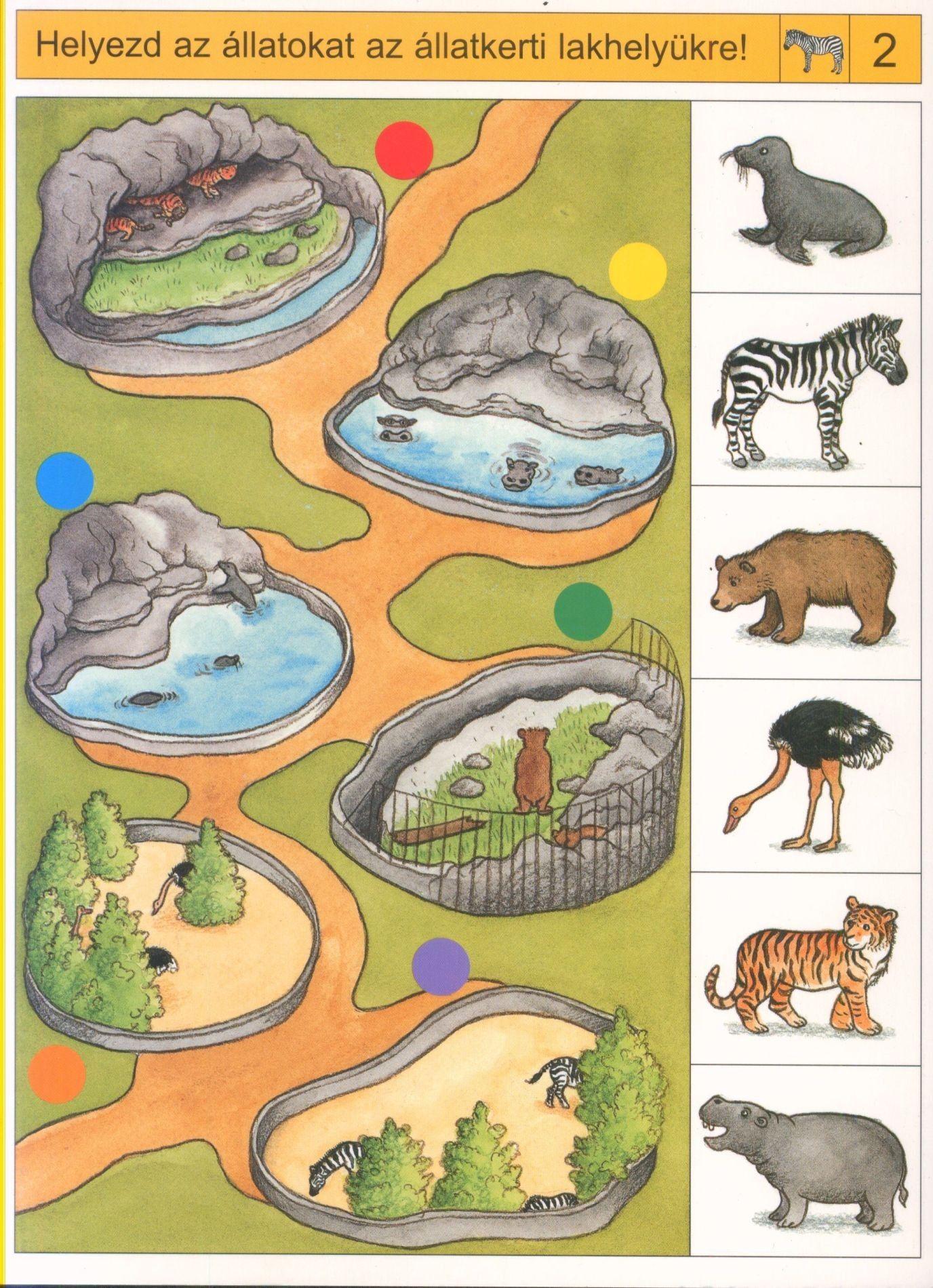 Pin by jaroslava houfková on Škola hrou pinterest animals