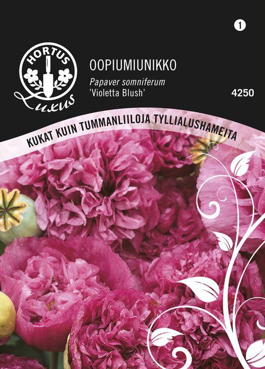Oopiumunikko