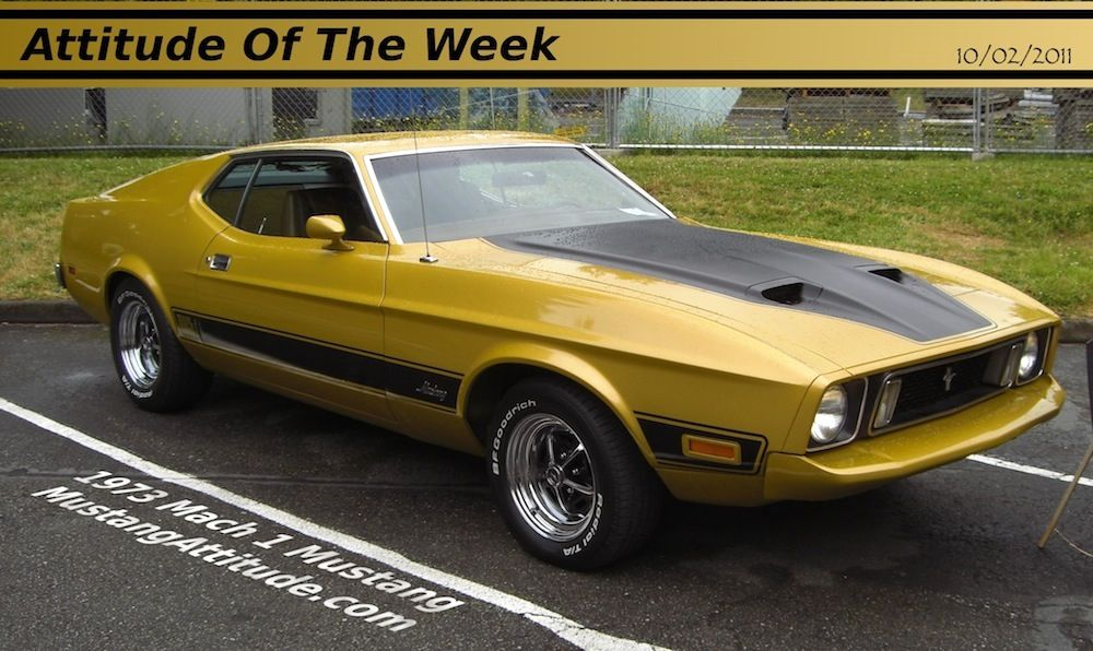 1973 Mach 1 Ford Mustang Fastback  Ford Mustang 73 74 75