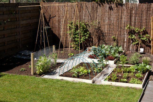 Kleingarten Ideen Gemuse Hochbeete Sichtschutz Matten Beetanlegen Kleingarten Ideen Gemus Small Vegetable Gardens Small Garden Allotment Square Foot Gardening