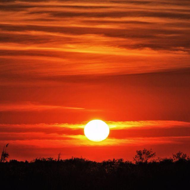 An epic Everglades sunset. By @mskimmi32