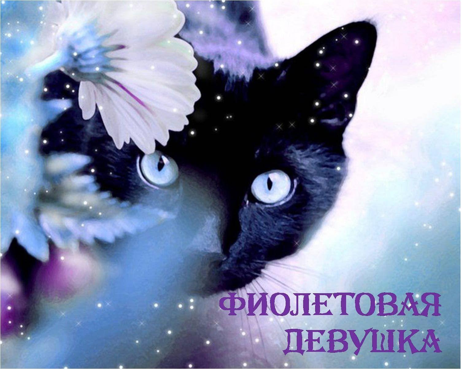 Top Wallpaper Minecraft Cats - ca369b3926b1eea490b2ec05a057e227  Snapshot_708430.jpg
