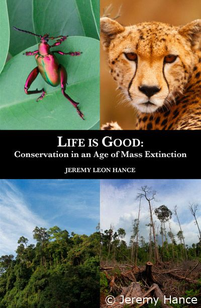 Mongabay Book Of Nature Essay Earn Top Review Life I Good Forest And Wildlife Conservation Environmental In English Hindi Protection Topic