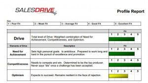 Online Sales Assessment Test The Drivetest Assessment Test