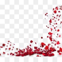 Rose Petals Floating Material Png And Clipart Rose Petals Falling Flower Png Images Rose Clipart